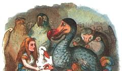 Is the Dodo Effect Dead?