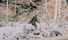 Bigfoot Film Turns 50