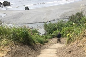 Luffenholtz Beach Trail Grand Re-Opening