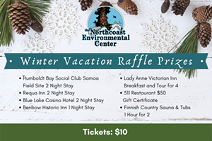 Winter Vacation Raffle