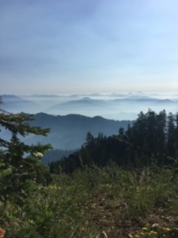 Smoke from Red Salmon Complex May Impact Air Quality