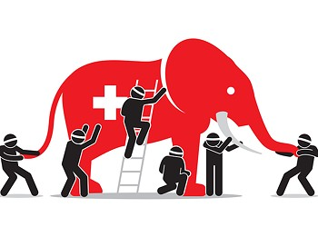 The (Single-Payer) Elephant in the Room
