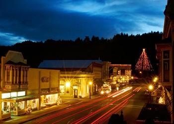 Flockin' Around the Christmas Tree in Ferndale