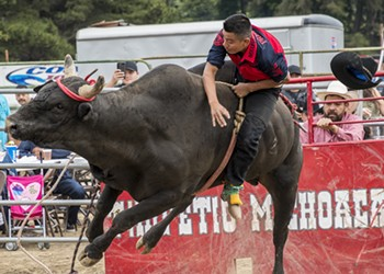 Mexican Rodeo at the Fair was Wild, Folks (Photos)