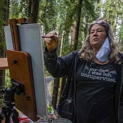 Sequoia Park Sky Walk Grand Opening