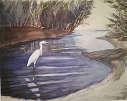 Uploaded by Liz Klopper