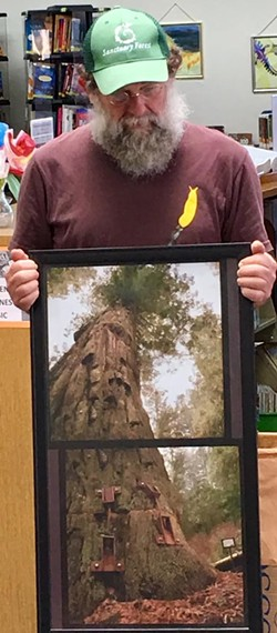 Stuart Moskowitz with photo of the Luna Tree - Uploaded by Susan Parsons 1