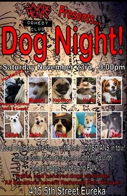 Dog Night! - Uploaded by Amaber Heidinger