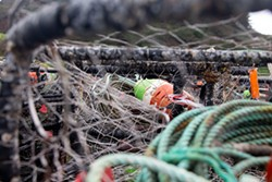 PHOTO BY THOMAS LAL - Commercial crab fishing is gear intensive, with boats losing about 10 percent of their traps annually.