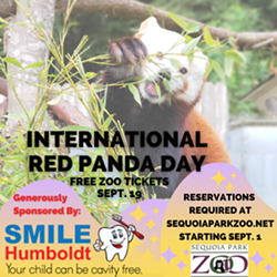 international_red_panda_day_1_.png