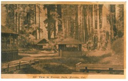 HUMBOLDT COUNTY HISTORICAL SOCIETY - Photo of zoo from middle of last century.
