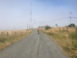 PHOTO BY HOLLIE ERNEST - The Kneeland Mountain climb into the mist.