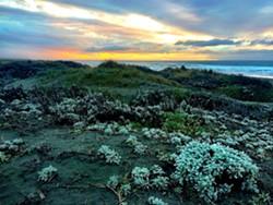 Sunset at the Dunes by Jennifer Savage.