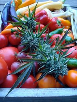 c2c3a444_fresh_produce.jpg
