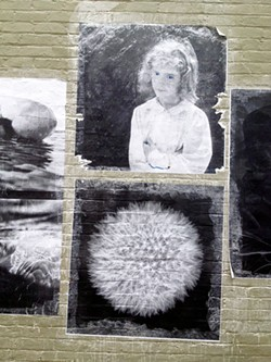 PHOTO BY GABRIELLE GOPINATH - The alleyway gallery outside Northtown Books.