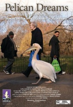 pelican-dreams-poster-final_sm-page-0011resize-205x300.jpg