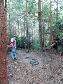 COURTESY OF THE CITY OF ARCATA - Natural resources forest technician Michael McDowall looks at the only trace of the vanished dwelling.