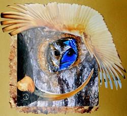 6fba7218_funny_bird.jpg
