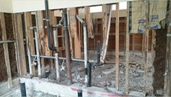 SUBMITTED. - Mold eats away load-bearing studs, creating structural problems.
