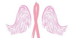 457c26ae_wings_for_a_cure_logo.jpg