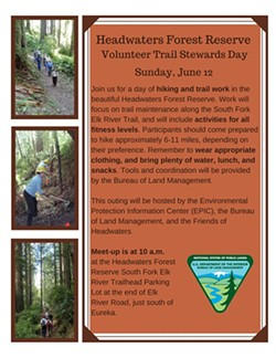 d4d4db56_volunteer_at_the_headwaters_forest_reservetrail_ste.jpg