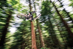 ROCKY ARROYO - Mountain biker Brett Watts goes airborne amid the redwoods.