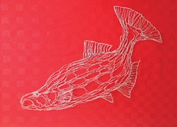 PHOTO BY GABRIELLE GOPINATH - A wire salmon by Elizabeth Berrien.