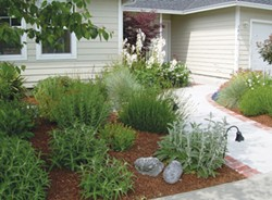 PHOTO BY DONNA WILDEARTH - A newly constructed front walkway offers a gracious approach to this Fortuna house.