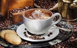 07bf6e14_coffee_tasting_web.jpg