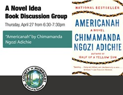 17d6e650_a-novel-idea---americanah_2_.jpg