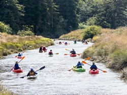 4e1a856d_kayaks_at_freshwater_slough_02_small_.jpg