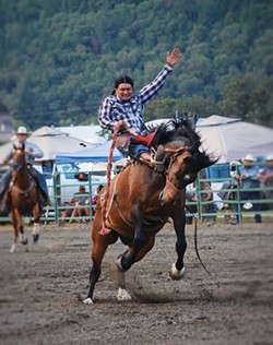 PHOTO BY EVE FREEDMAN - oe Escalera, a member of Nevada's Te-Moak Tribe of Western Shoshone, competes in the bronc-riding event.