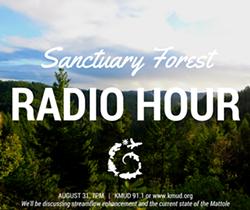 6a31037f_kmud_radio_hour_1_.png