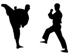 150e5e21_karate-web_1_.jpg