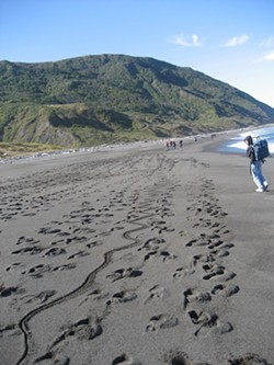 da95785a_footprints_on_the_coast.jpg