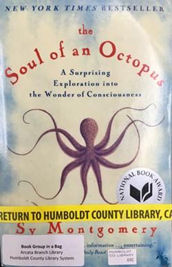093919b5_soul_of_octopus.jpg