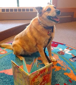 67d7c2f1_paws_dog_reading.jpg