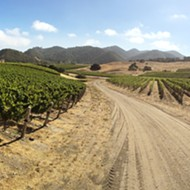 Bright energy: Albariño finds a home in the Edna Valley