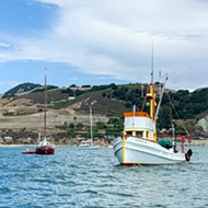 Harbor dispute: The Port San Luis Harbor District debates its law enforcement's use of force policies