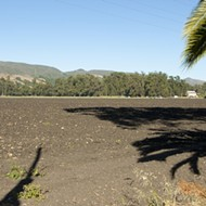 Controversial Dalidio Ranch finds a potential buyer