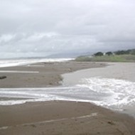 Is desalination damned in Cambria?