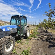 Cal Poly nixes development  on ag land