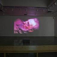 Cuesta College screens avant garde video art in new exhibit