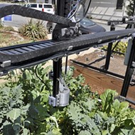 Automated garden: FarmBot is the future of growing vegetables