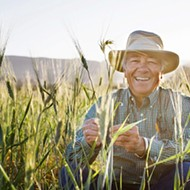 Ancient grains for modern times: Kandarian Organic Farms is growing grains, beans, and superseeds of the future