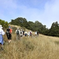 Just a taste: A partial tour of the Pismo Preserve