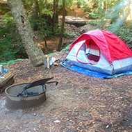 Relaxing in the redwoods:Camping at Big Sur's Ventana Campground