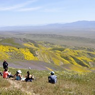 Trump directives target the Carrizo Plain, offshore drilling