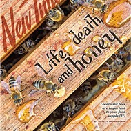 Life, death, and honey: Local wild bees are important to your food supply