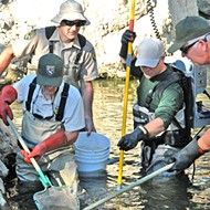 The California Department of Fish and Wildlife works to bring a Natural Resource and Volunteer Program to the Central Coast